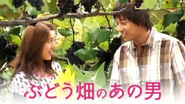 ぶどう畑のあの男の動画無料サイトまとめ!日本語字幕含め1話から全話視聴!