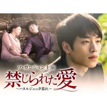 禁じられた愛の動画無料サイトまとめ!日本語字幕含め1話から全話視聴!