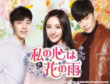 私の心は花の雨の動画無料サイトまとめ!日本語字幕含め1話から全話視聴!