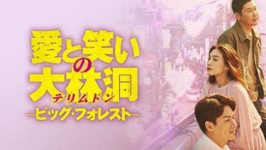 愛と笑いの大林洞 −ビッグ・フォレストの動画無料サイトまとめ!日本語字幕含め1話から全話視聴!