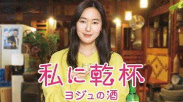 「私に乾杯の動画無料サイトまとめ!日本語字幕含め1話から全話視聴!」